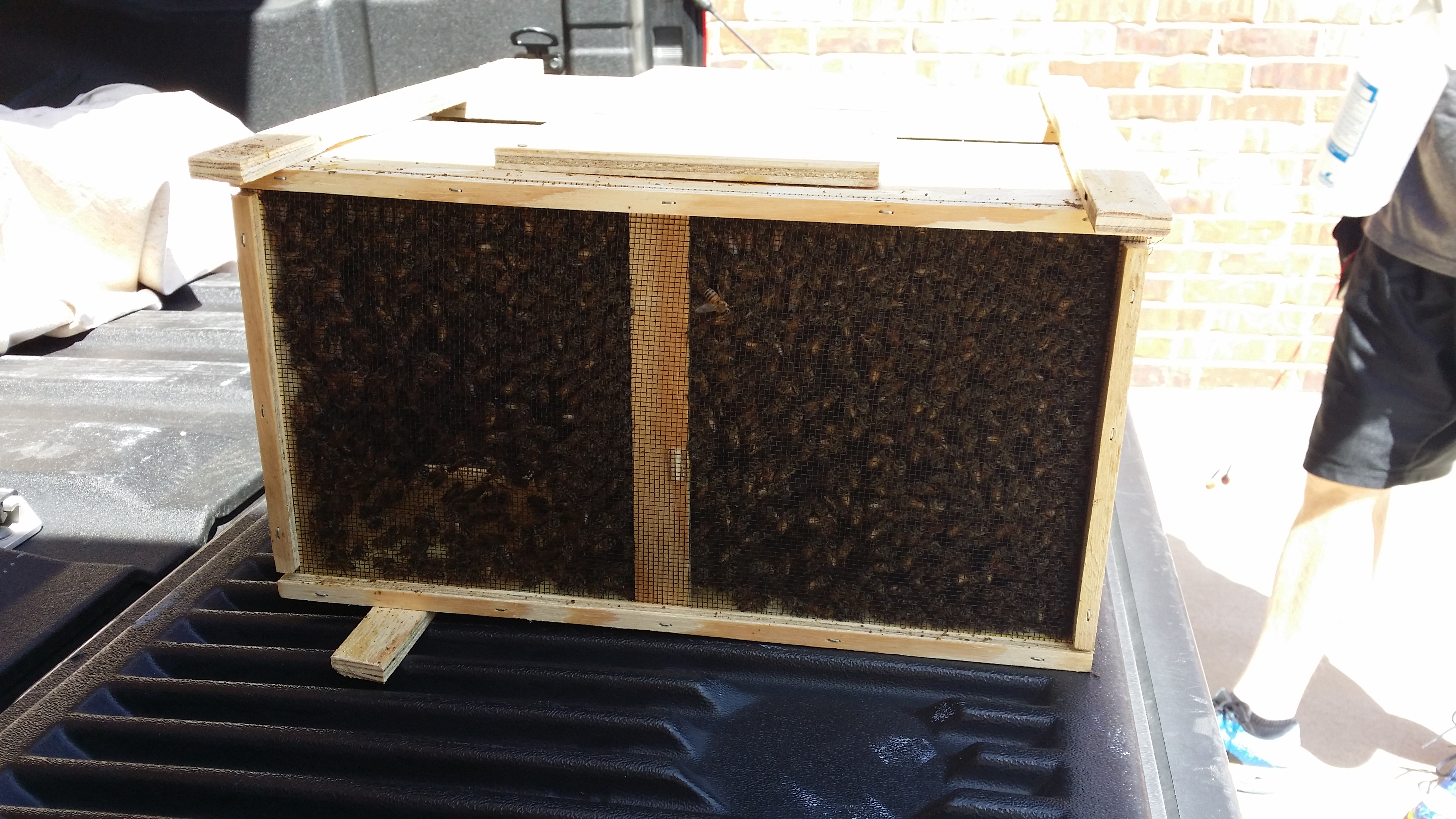 top feeders a hive forblog feeder bees s feeding day in organics bar ferry bee
