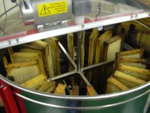 inside-honey-extractor